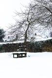 L'effet de la bête de la tempête est de neige d'hiver dans Drews photographie stock
