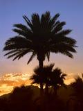 l'Egypte - coucher du soleil Photo libre de droits