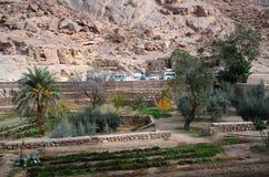 L'Egypte, monastère de St Catherines, jardin de cloître Images libres de droits