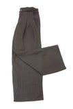 Pantaloni grigi Pinstriped dell'elefante con i particolari ornated Immagini Stock