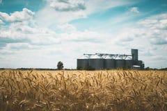L'elevatore di grano immagini stock libere da diritti