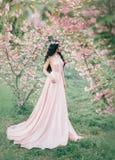 L'elfo incredibile e delicato in un lussuoso, dentella delicatamente le passeggiate del vestito in primavera, sakura ed il frutte immagine stock libera da diritti