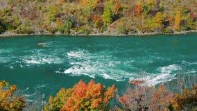 L'embarcation de plaisance jaune navigue le long de la rivière Niagara en aval de des chutes du Niagara La rivière divise les Eta clips vidéos