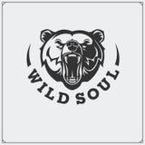 L'emblème avec l'ours Photo libre de droits