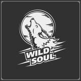 L'emblème avec le coyote pour une équipe de sport illustration libre de droits
