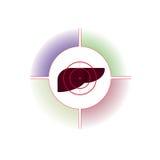 L'emblema, logo Il fegato è sotto la pistola Fotografia Stock