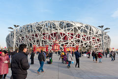 L'emboîtement de 2008 de Jeux Olympiques oiseaux principaux de stade Photo stock