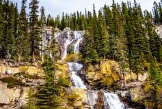L'embrouillement tombe en Jasper National Park Images libres de droits