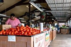 L'employé réapprovisionne des tomates au marché de fermes de Durban photo stock