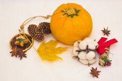 l'Encore-vie avec les cônes oranges de courgette et la feuille d'érable jaune Photo stock