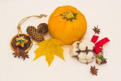 l'Encore-vie avec les cônes oranges de courgette et la feuille d'érable jaune Photographie stock
