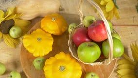 L'encore-vie color?e Vue de ci-avant Pastèque, courge, pommes R?colte 4k d'automne clips vidéos