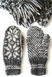 L'encore-vie d'hiver Image stock