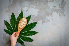 L'encore-vie de detox de zen - brosse en bambou de traitement de station thermale de corps sur le fond tropical vert de feuille photos libres de droits