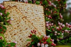 L'Encore-vie De Pesach Avec Du Pain Juif De Pâque De Vin Et