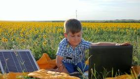 L'enfant à l'aide de la batterie solaire recharge l'ordinateur portable sur le champ de fond des tournesols, regards heureux d'en banque de vidéos