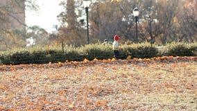 L'enfant court en automne le parc de ville riant et jouant et sautant dans le mouvement lent banque de vidéos