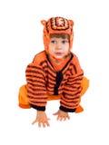L'enfant dans un procès d'un tigre Photographie stock libre de droits