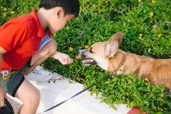 L'enfant embrasse affectueusement son chien, corgi d'un pembroke Images libres de droits