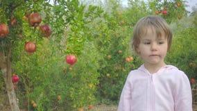L'enfant en bas âge ne peut pas au fruit mûr de grenade dans le jardin clips vidéos