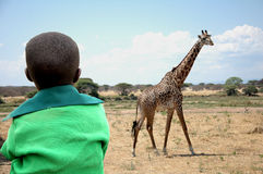 L'enfant et la girafe Photographie stock libre de droits