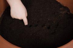 L'enfant fait des trous en terre Image libre de droits
