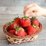L'enfant prend une fraise d'un panier Le petit enfant juge une fraise disponible Badine la nourriture saine Fraises rouges juteus Image stock