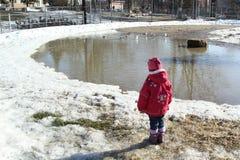 L'enfant regarde les oiseaux Photo libre de droits