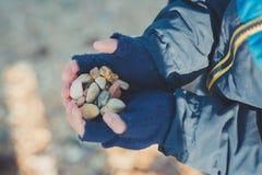 L'enfant remet le mittend par le temps froid d'automne d'hiver tenant le type différent coloré pierres sur la plage rocheuse aux  Photo stock
