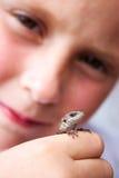 L'enfant retient un lézard dans sa main. Photos stock