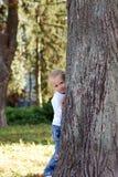 L'enfant s'est caché derrière un arbre en stationnement d'été Photographie stock libre de droits