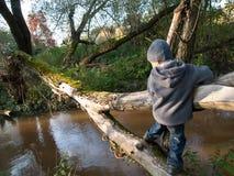 L'enfant va sur un rondin Image libre de droits