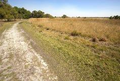L'enroulement de sentier de randonnée par la Floride frottent au pair de Kissimmee de lac Image stock