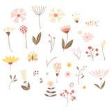 L'ensemble d'été/de vecteur de ressort fleurit, des feuilles et des branches Photo libre de droits