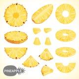 L'ensemble d'ananas dans divers styles dirigent le format Image stock