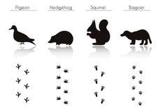 L'ensemble d'animal et d'oiseau traîne avec le nom Images stock