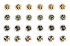 L'ensemble d'icônes d'épice des graines de coriandre épicées sèches a placé des poivrons de piment sur le fond blanc Photographie stock libre de droits