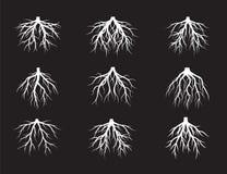 L'ensemble de blanc enracine l'arbre sur le fond noir Illustration de vecteur illustration libre de droits