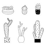 L'ensemble de cactus mignon de style de bande dessinée et les succulents dirigent l'illustration Illustration Libre de Droits