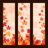 L'ensemble de cadres de vecteur avec l'érable d'automne part Images stock