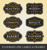 L'ensemble de calligraphie de flourish encadre et les labels conçoivent Image stock