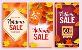L'ensemble de conception d'affiche de vecteur de vente d'automne avec l'érable coloré part de l'élément illustration libre de droits