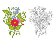 L'ensemble de contour et de vintage coloré fleurit le bouquet ou le modèle illustration stock