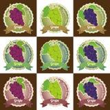 L'ensemble de divers autocollant d'insigne de label d'étiquette de fruit de raisin et le logo conçoivent dans le vecteur Photographie stock libre de droits