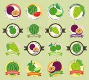 L'ensemble de divers fruit frais et la qualité de la meilleure qualité végétale étiquettent Photographie stock
