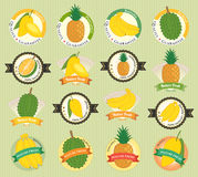 L'ensemble de divers fruit frais et la qualité de la meilleure qualité végétale étiquettent Photo libre de droits