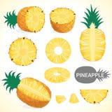 L'ensemble de fruit d'ananas dans divers styles dirigent le format Images stock