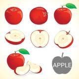 L'ensemble de fruit de pomme dans divers styles dirigent le format Images libres de droits