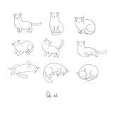 L'ensemble de griffonnage différent pose le chat pets illustration de vecteur