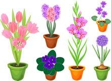 L'ensemble de jardin différent fleurit dans des pots de fleur illustration stock